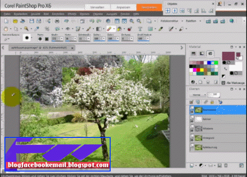 aplikasi pengedit foto Corel Paint Shop