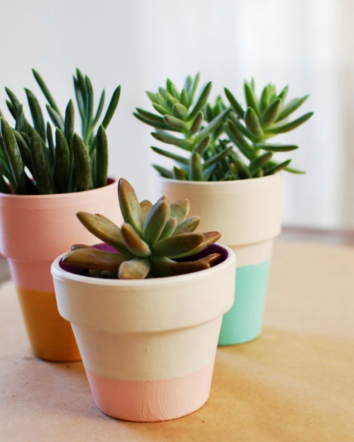 Trucos para limpiar y decorar viejas macetas de barro - Macetas minimalistas ...