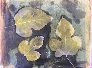 Solarfast prints_Sue Reno_ Image 18