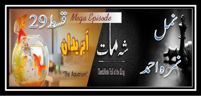Namal by Nimra Ahmed Episode 29 pdf