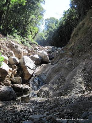 Cerro Viejo - Grandes piedras