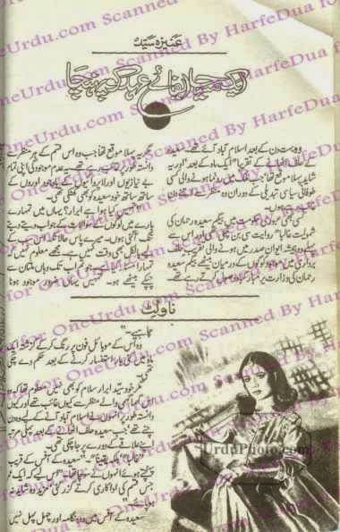 Aik maseeha efa e ehad ko pohancha by Aneeza Sayed