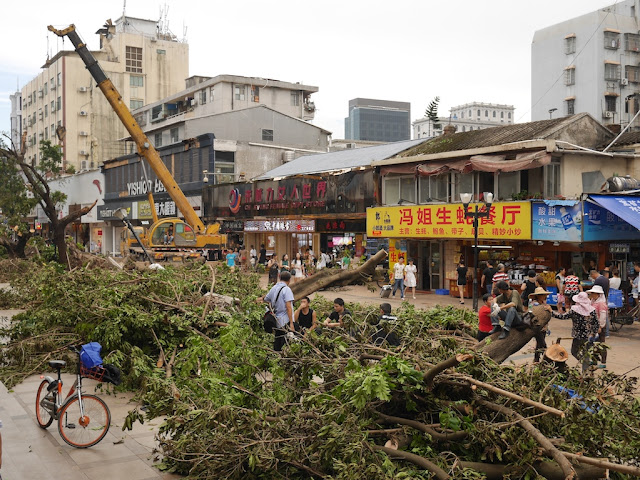 cleanup on the Lianhua Road Pedestrian Street after Typhoon Hato