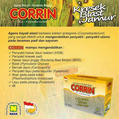 Corrin Nasa