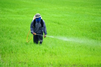 Excessive Use of Fertilizers & Pesticides