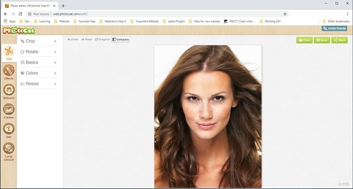 Photocat Online image editing software