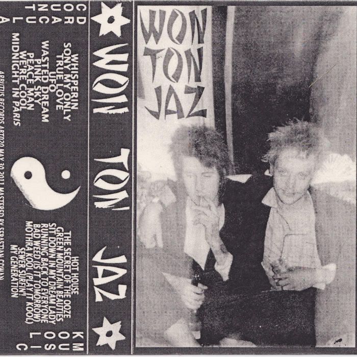 Sean Nicholas Savage and Kool Music - Won Ton Jaz