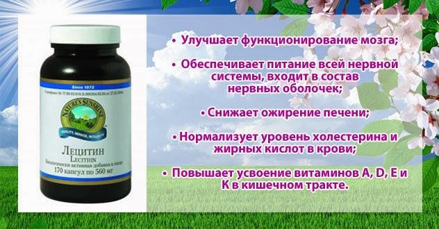 NSP в СНГ и на Международном рынке : Лецитин – лучшая поддержка ...