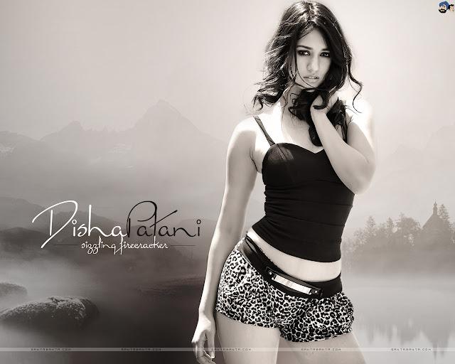 Disha Patani Wallpaper