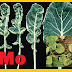 Dampak Kekurangan Kelebihan Unsur Molibdenum (Mo) pada Tanaman