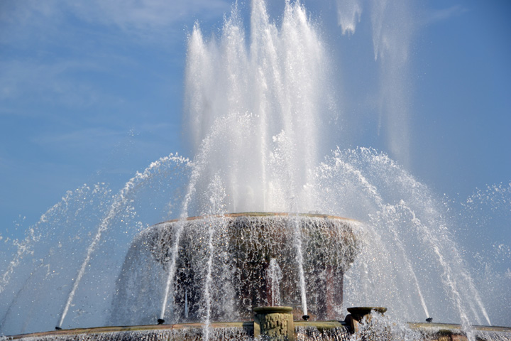 Ruby explores dog friendly Chicago and Buckingham Fountain