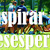Paradoja de la pelota de #rugby ¿Motivación? ¿Inspiración? ¿Desesperación? @SchmitzOscar #VideoRecomendado