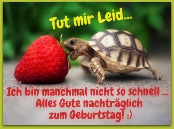 Alles Gute Zum Geburtstag Nachtraglich Lustige Wunsche Zum Geburtstag