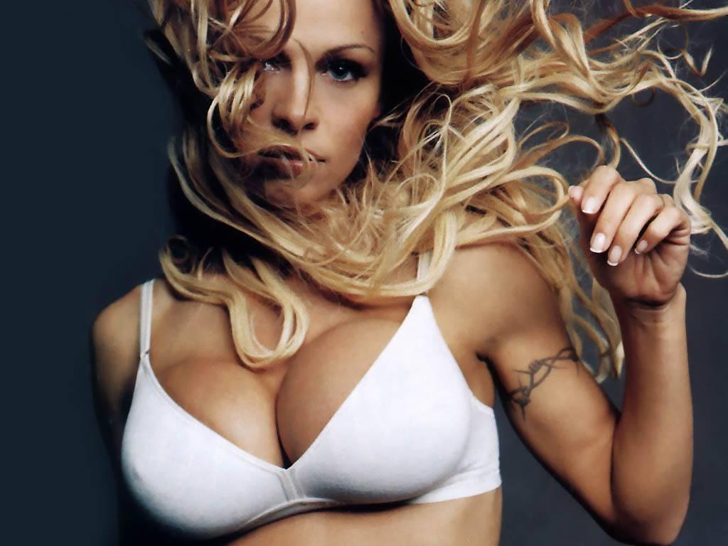 Pamela Anderson Hd