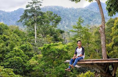 Wisata Rumah Pohon TAHURA