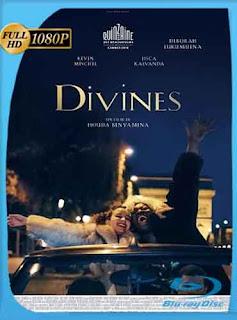 Divinas (2016) HD [1080p] Latino [Mega] dizonHD