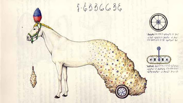 kuda aneh