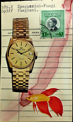 library card Dada Fluxus watch postage stamp tropical fish mail art collage