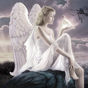 5 Engelen vastgelegd op camera