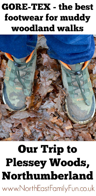 Our Visit to Plessey Woods - A FREE day out in Northumberland. It was very muddy and the perfect chance for Harry to put his GORE-TEX shoes through their paces