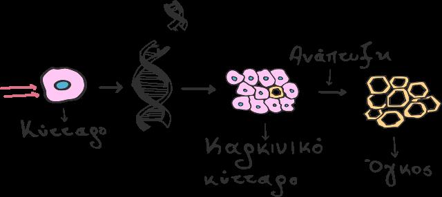 Δημιουργία καρκινικών κυττάρων