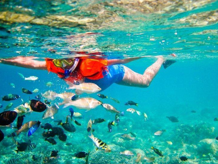 Diving di Lombok