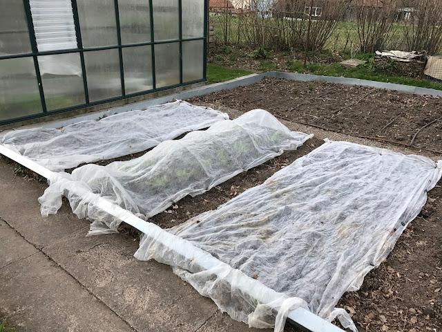 Vliesabdeckung als Schutz für das junge Gemüse im Frühjahr (c) by Joachim Wenk