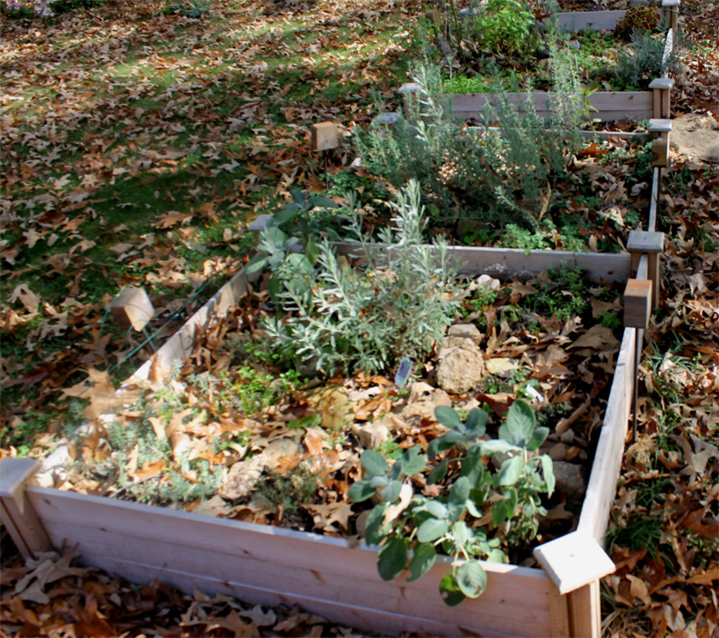 Gardening Tips For Small Spaces: Raised Herb Beds Update