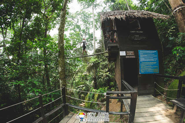 Challenge Yourself At Canopy Walkway FRIM