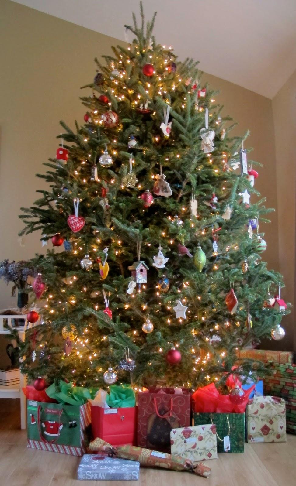 Moj Dom Boże Narodzenie 2013