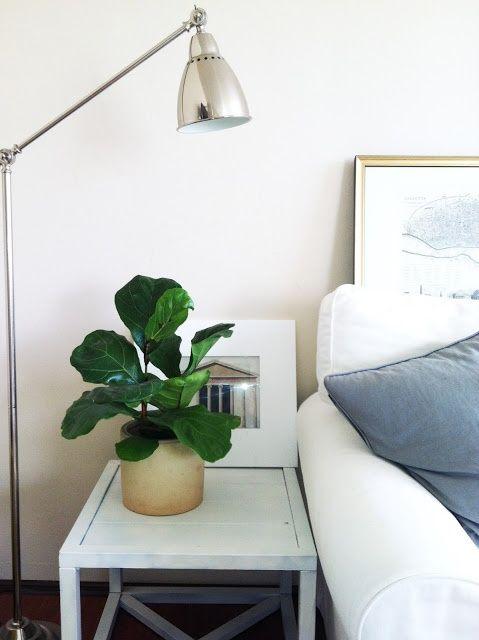 Small Bookshelf Corner