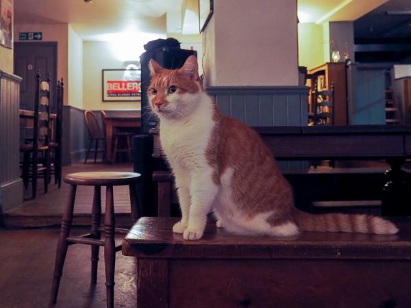 archway charlotte despard