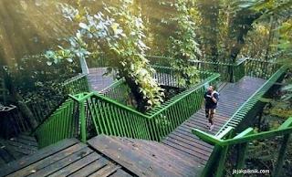 Taman Hutan Babakan Siliwangi