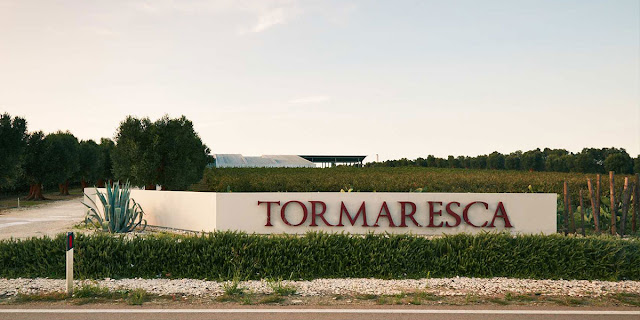 Tormaresca producer of primitivo in Puglia