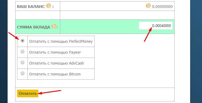 Регистрация в BitState 4