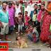 हत्यारिन बनी बिजली की जर्जर तार (भाग-2): आलमनगर में एक परिवार ने बेटा खोया