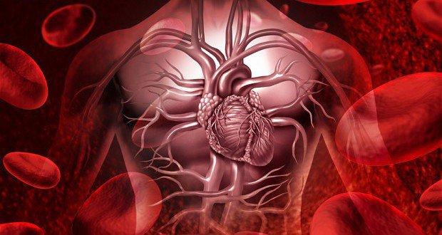 ثلاث وصفات طبيعية تفيد في علاج اضطرابات القلب