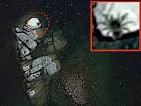 Pemburu UFO Klaim Temukan Laba-laba Sebesar Bus