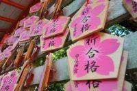 大阪府立高校入試での合格を祈る