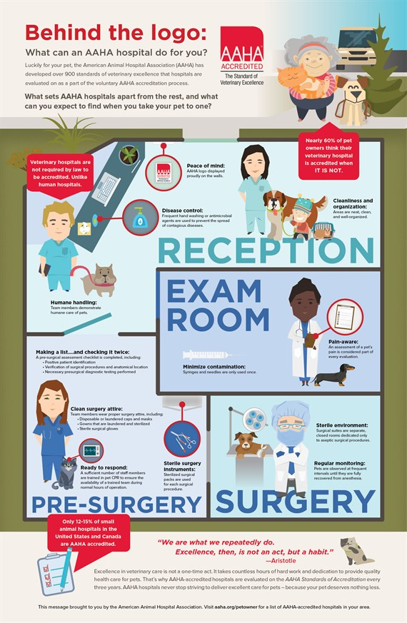 Infographic of AAHA behind the scenes services