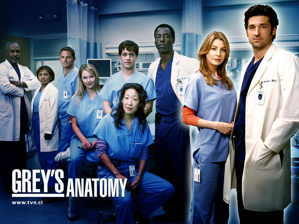 Grey S Anatomy Season 1 2 3 Single Link Divxarea
