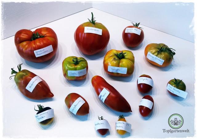 Gartenblog Topfgartenwelt Aussaat Tomatensorten Gartensaison 2018: sortenechte Tomatensamen selbst vorziehen