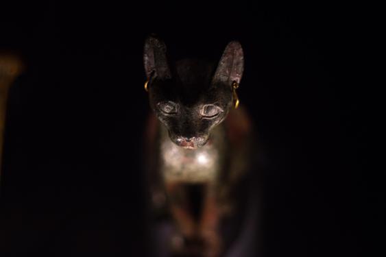 Kissan kulttuurinen asema: egypti