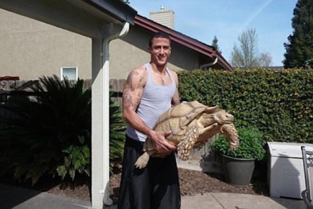 #7 Sammy: Η χελώνα από την Καλιφόρνια που ζυγίζει 52,16 κιλά.