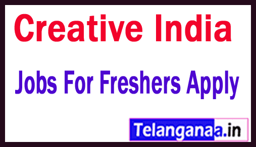 Creative India Recruitment Jobs For Freshers Apply