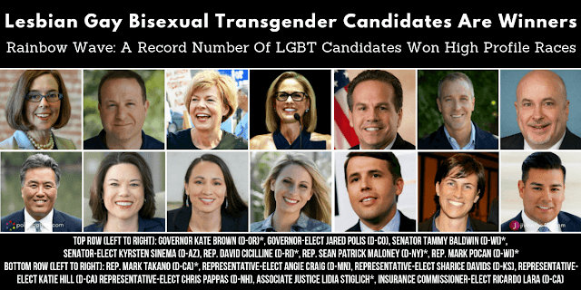 LGBT Election Winners 2018