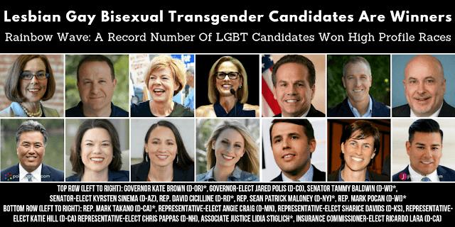LGBT Election Winners 2018