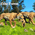 Tigers of the Forest (Wild Foot Games ) Android Game