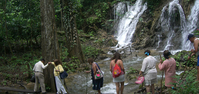 Selva de palenque Chiapas