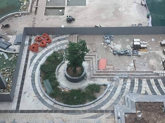 Phần khuôn 13.000m2 đang dần được phủ xanh tại Eco green city